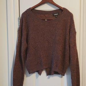 Express short rainbow sweater